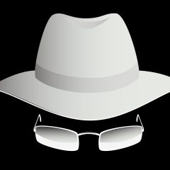 "Ethical ""white hat"" Hacker"